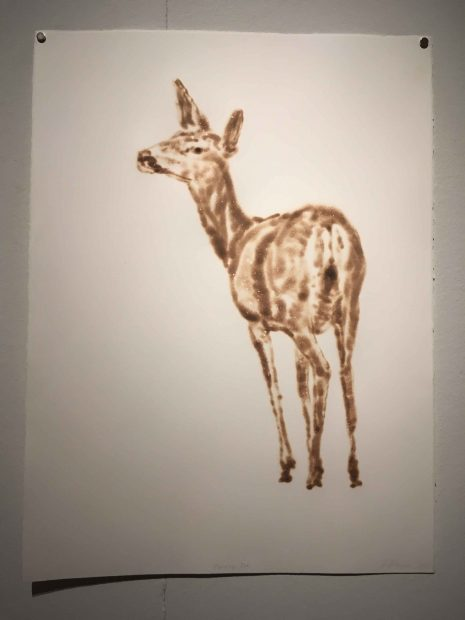 Turning Doe, 2017. Torch drawing on paper