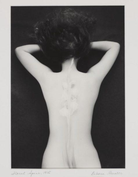 Debora Hunter's Floral Spine