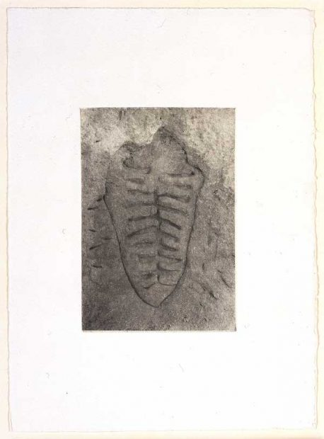 Ana Mendieta Itiba Cahubaba II [Old Mother Blood], from the Rupestrian Sculptures Series 1981/1983 Photo-etching on chine collé