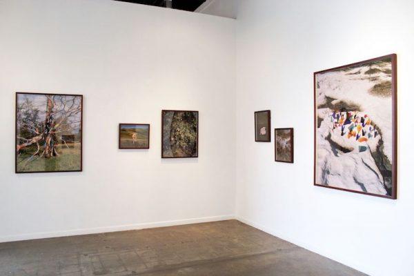 Synchrodogs: install shot at Galleri Urbane