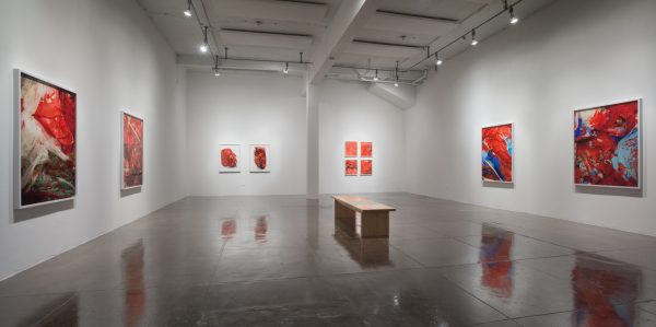 Photographs and other works by Sarah Sudhoff at Artpace in San Antonio