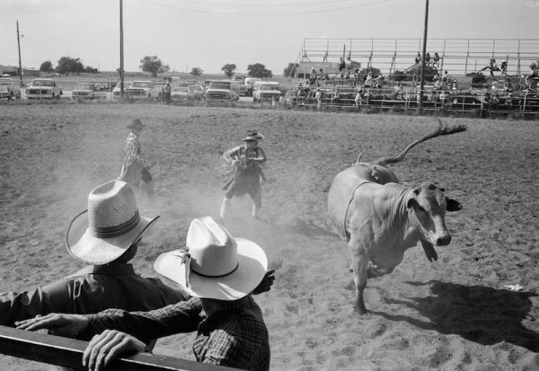Luther Smith, Bull. Hats, 1985,