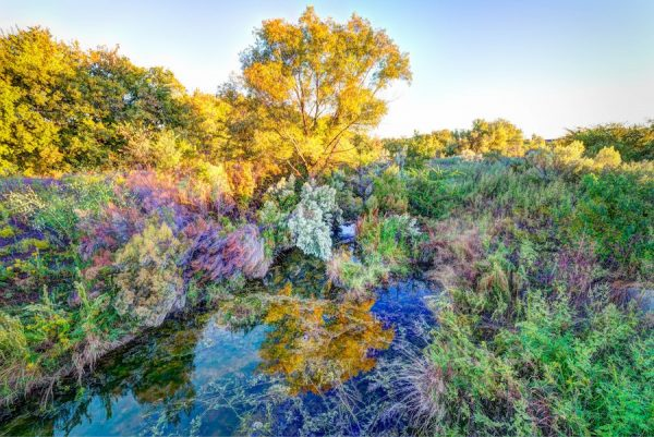 Luther Smith, Creek, off North Tarrant Parkway, Fort Worth, Texas, October 8, 2017