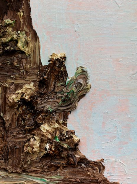 Victor Estrada, detail from Pink Cloud / Chocolate Mountain