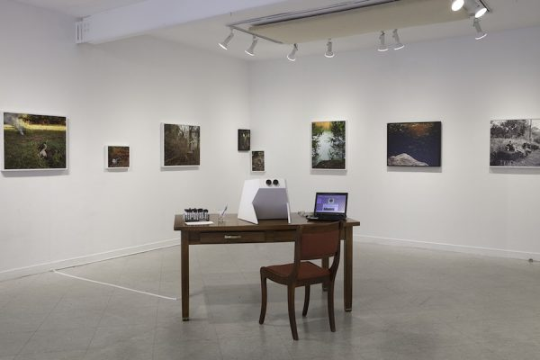 Installation view: Morgan Ashcom's What the Living Carry