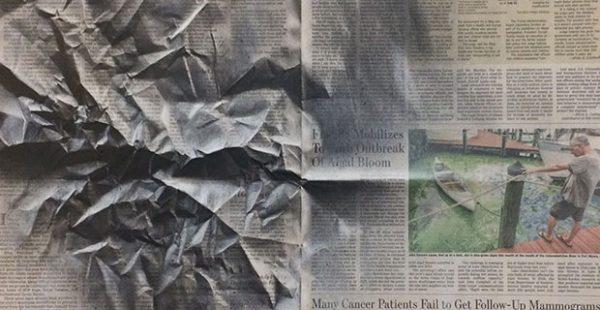 Houston artist Renata Lucia- News vs. Nature (Gulf) art work in Galveston Texas