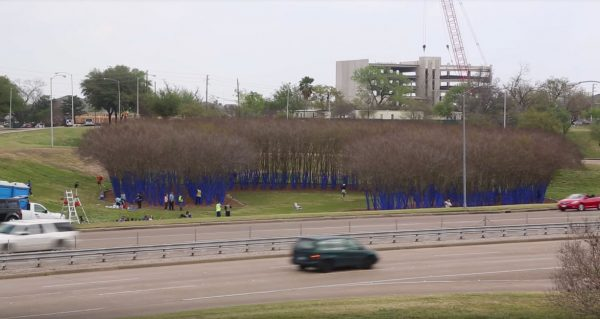 Konstantin Dimopoulos blue trees project in Houston Texas