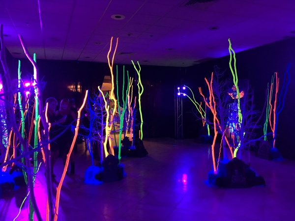Orange Show Center for Visionary Art Houston Gala Painted Trees