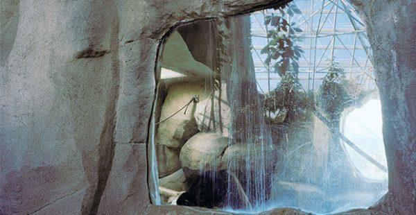 Oozy Rat in a Sanitary Zoo UT VAC Art show