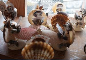shell poker