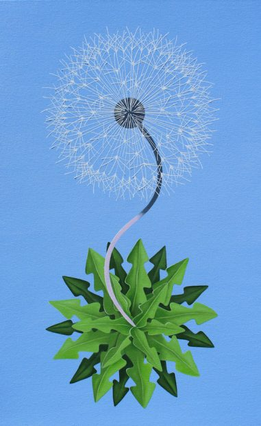 Peter Harrington, New World Dandelion. Oil on canvas, 48 x 30""