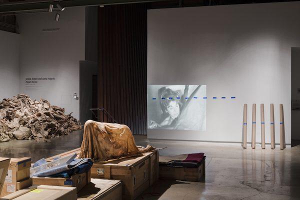 Installation view (Identity),Janine Antoni and Anna Halprin: Paper Dance,The Contemporary Austin