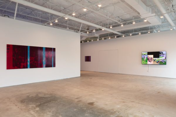Installation view of Emmanuel Van der Auwera