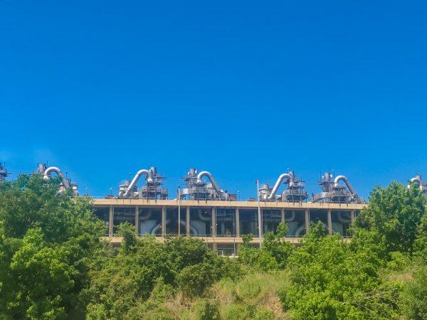Henry G. Sanchez's BioArt Bayou-torium