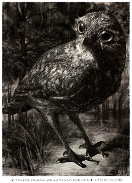 Tyler Vouros, Athena Owl, 2015.