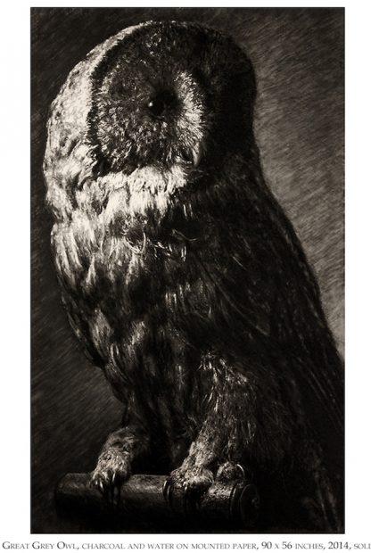 Tyler Vouros, Giant Grey, 2015