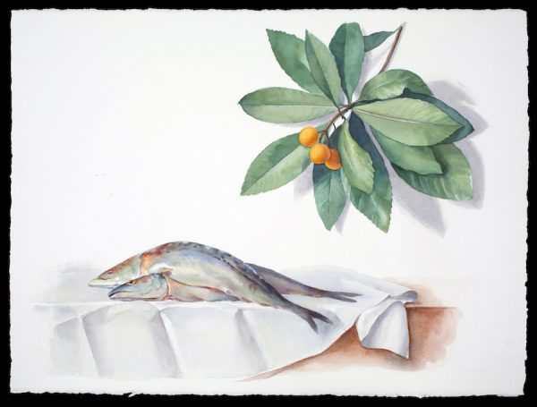 Carol Ivey, Mackerel after Anne Vallayer-Coster (18th C. French) with Kumquats, 2019.