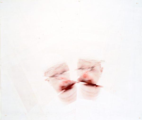 Roni Horn, Clownout (2), 2004.