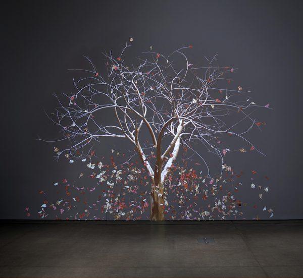 Jennifer Steinkamp, Judy Crook, 2012-18