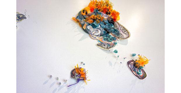 Margaret Craig- Sea Islands at Blue Star Contemporary in San Antonio October 4 2019