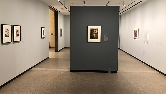 Transformation-of-downstairs-galleries-at-Amon-Carter-Museum-of American-Art