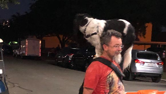 Man-and-dog-at-ArtsGoggle-Fort-Worth
