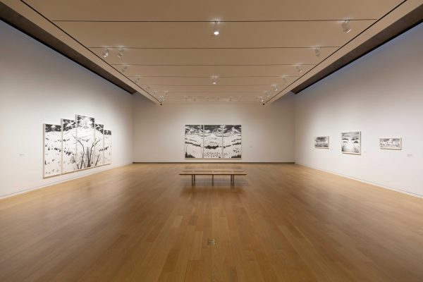Installation view of the exhibition Robyn O'Neil- WE, THE MASSES at the Modern art museum of fort worth
