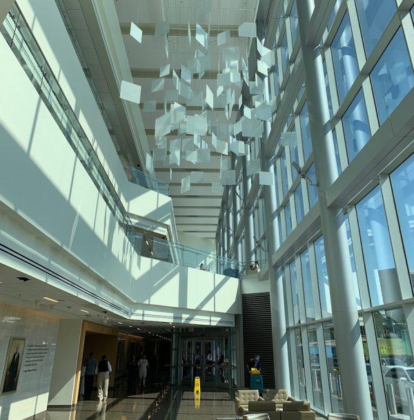 Work by Spencer Finch at UT Southwestern