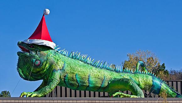 Bob-Wade-Sculpture-Iggy-at-Fort-Worth-Zoo