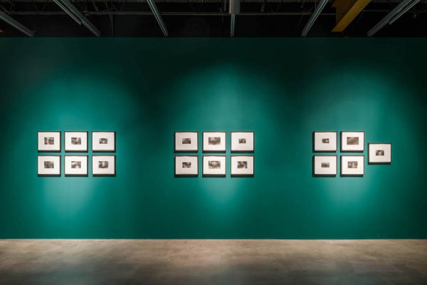 Dario Robleto, The First Time, the Heart (A Portrait of Life 1854–1913), 2017–2018