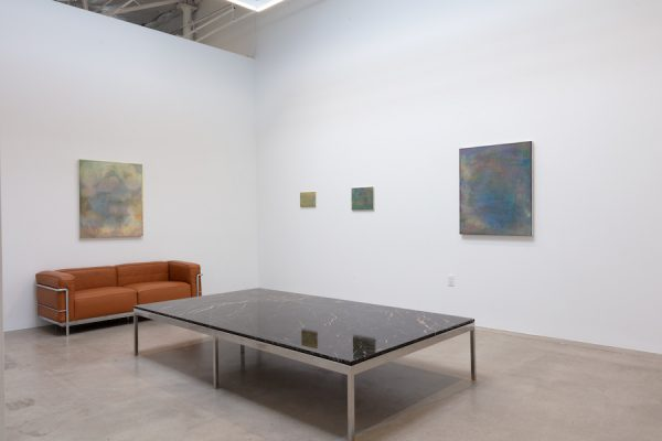 Installation view of Marjorie Norman Schwarz: Slow Change at Gallery 12.26 in Dallas.