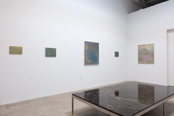 Installation view of Marjorie Norman Schwarz: Slow Change at Gallery 12.26 in Dallas.
