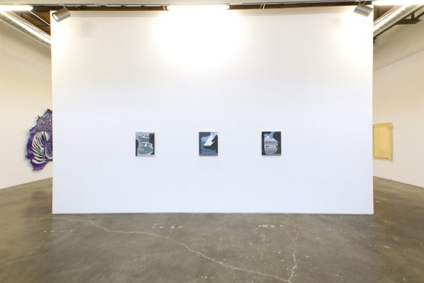 Installation view: Work by Brian Scott Cambell