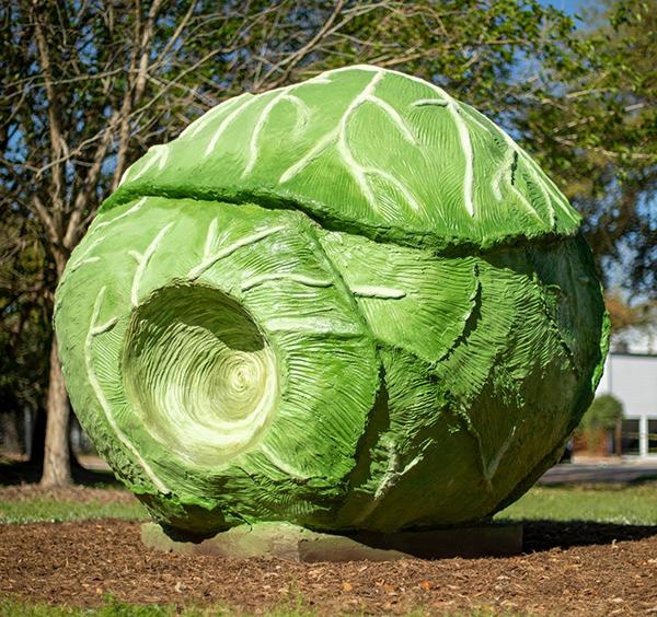 Big Cabbage by Bill Davenport