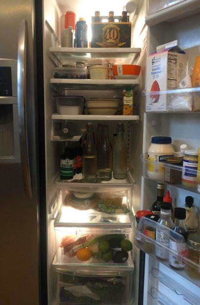 What-is-in-your-fridge-Terri-Thornton