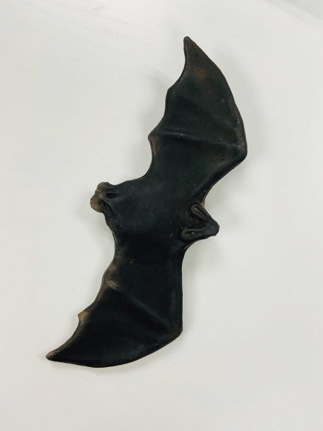 Ceramic bat sculpture by artist Celia Eberle