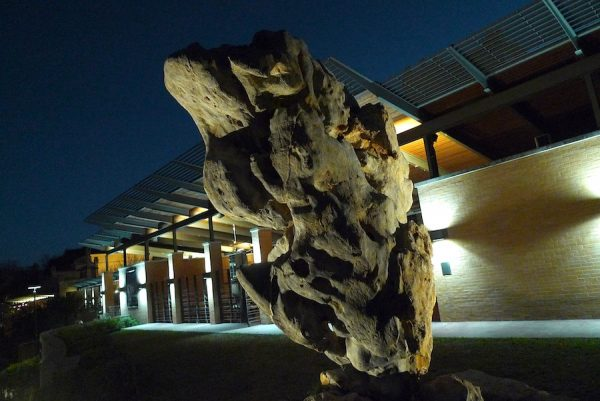 Taihu Rock, nocturnal view