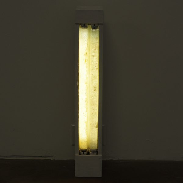 Tino Ward, Daylight and Cool Light (after Dan Flavin), 2020.