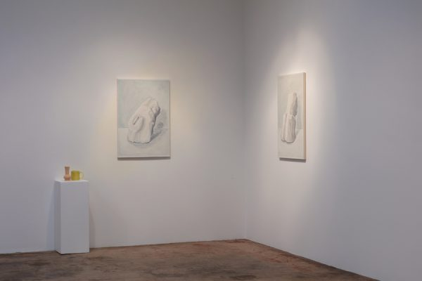 Installation view, Francesca Fuchs at Talley Dunn Gallery, 2020