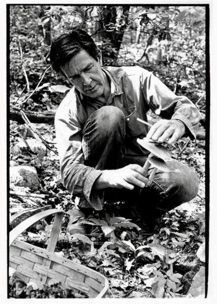 John Cage picking mushrooms in the woods