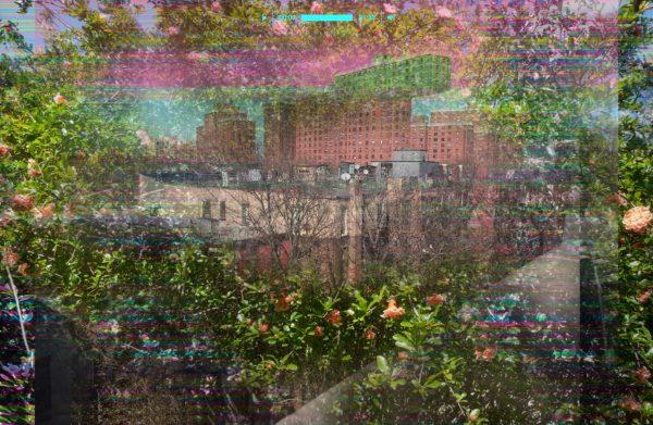 PSO 92 | Collaboration with Bob Warner Brooklyn, NY+ Austin, TX May 2, 2020