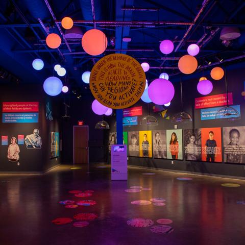 Sara Sudhoff's Installation-The Reading Brain-Doseum, San Antonio