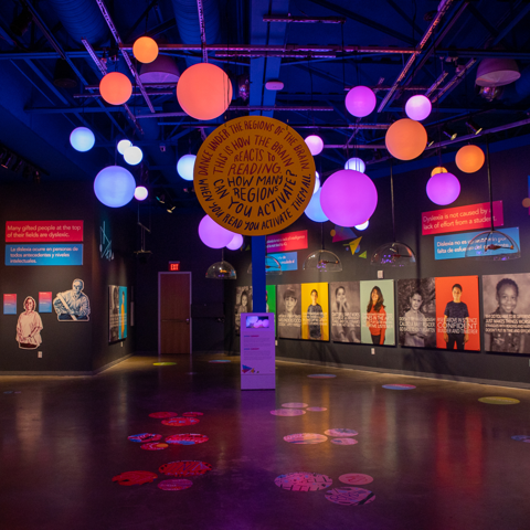 Sara Sudhoff's Installation-The Reading Brain-Doseum, San Antonio