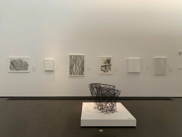 Line Into Space exhibition at the MFAH kinder building