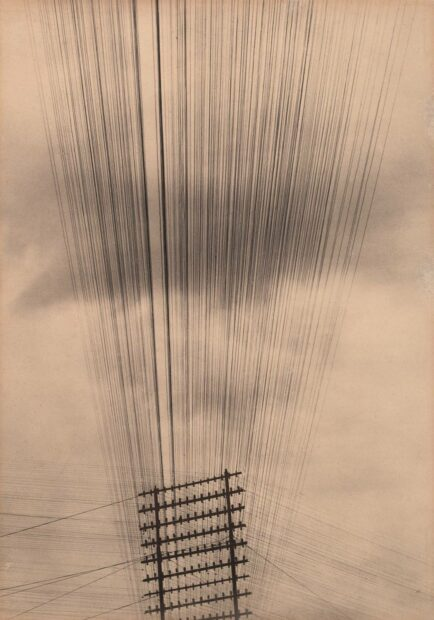Tina Modotti, Telephone Wires, Mexico, 1925. Courtesy the Museum of Modern Art, New York.