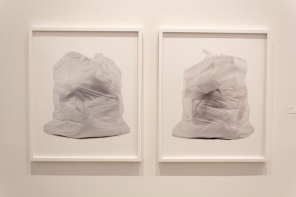 Chuck Ramirez, White 1 and White 2, 1998