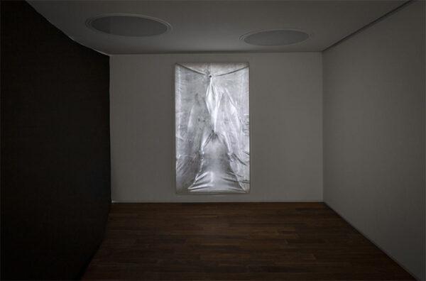 Ryan Hawk's Untitled (vacuum), 2016