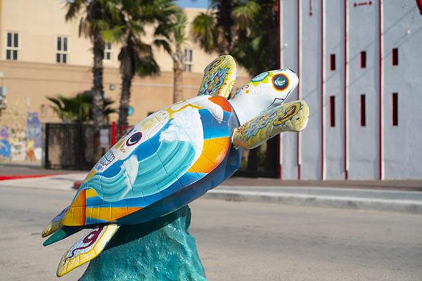 La-Calavera turtle