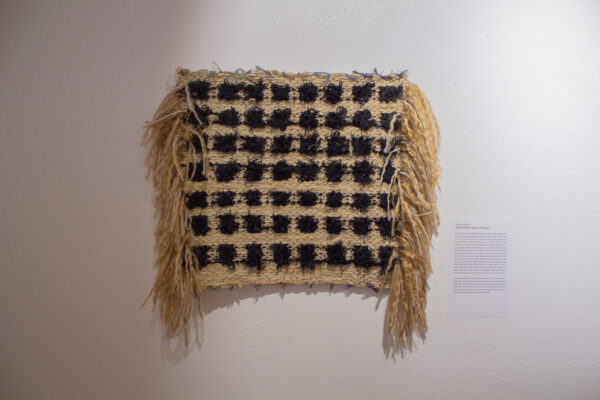Molly Sydnor on view at the African American Museum in Dallas