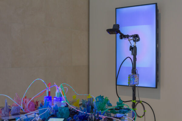 Nasher Public: Melanie Clemmons, on view at the Nasher Sculpture Center in Dallas